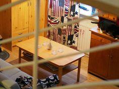 Ti-ti-uu / titiuu72: Siivottu avarammaksi kotia ja pääkoppaa