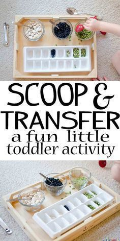Scoop and Transfer - Busy Toddler - Preschool activities - Toddler Learning Activities, Games For Toddlers, Montessori Toddler, Toddler Play, Infant Activities, Toddler Crafts, Preschool Activities, Kids Learning, Montessori Room