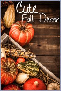 12 of the Best Fall Decor Ideas and Projects – Sunlit Spaces Thanksgiving Decorations, Seasonal Decor, Autumn Decorating, Decorating Ideas, Fall Vegetables, Welcome Fall, Fall Home Decor, Autumn Theme, Fall Harvest