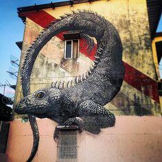 Street Art - ROA New Murals - Panama City - en el barrio de Curundu !
