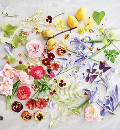 Marcy Cook's Artistic Floral Style All Flowers, Large Flowers, Spring Flowers, Floral Style, Floral Design, Queen Of Sweden, Spring Flower Arrangements, Pansies, Tulips