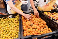 Organic Foods Still Aren't As Mass Market As You Might Think = Shoppers sort through yellow plums at the Union Square Park greenmarket in New York City. A study of retailers in Manhattan finds that organic foods are much more common in affluent neighborhoods.