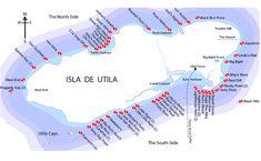Dive sites in Utila