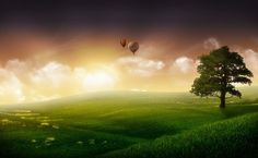 Hot air balloon over the field HD Wallpaper