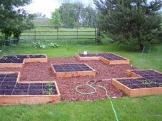 An attractive three Square foot wide gardening layout; built in balanced patterns! It emphasizes the contrast between disordered natural landscape and the intense precision of growing food in precisely laid out square foot plots. Notice that these beds are only about 8 or 10 inches high, which complements the three foot wide design, for reaching into the middle sections without having to put a hand down on the soil to keep ones balance.