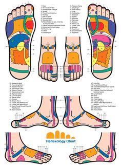 Reflexology Chart www.shopprice.us/cat/327/health-beauty