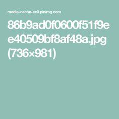 86b9ad0f0600f51f9ee40509bf8af48a.jpg (736×981)
