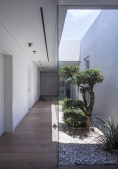 Family as a Community / Jacobs-Yaniv Architects - patio interior Design Exterior, Interior And Exterior, Wall Exterior, Garden Architecture, Interior Architecture, Light Architecture, Internal Courtyard, Indoor Courtyard, Modern Courtyard