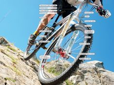 Buyer's guide to mountain bike suspension, part 3 - BikeRadar Mountain Bike Suspension, Full Suspension, Mountain Bicycle, Mountain Biking, Bike Deals, Off Road Cycling, Bone Shaker, Air Shocks, Seal Design