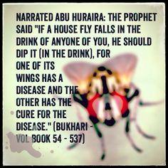 Hadith - reference - Sahih al Bukhari Vol Book 54 - 537                  ~Amatullah♥
