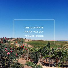 Breaks down wineries, picnic options, casual and fancy restaurants by type