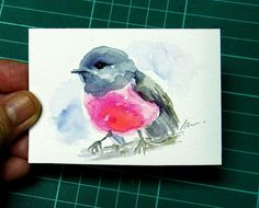 Original ACEO Bird Watercolor Painting of Pink Robin by NuFineArt5