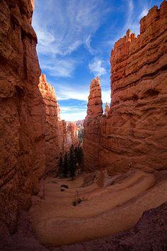 Wall Street, Navajo Loop Trail, Bryce Canyon, Utah