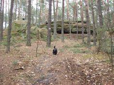Brody Iłżeckie Rezerwat Skały W Krynkach