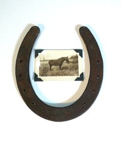 This would be a cuote way to decorate a horse room or remeber a horse that has left. Western Theme, Western Decor, Rustic Decor, Horseshoe Crafts, Horseshoe Art, Horse Cards, Western Crafts, Equestrian Decor, Horse Shoes
