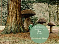 Adventurous Journeys Wakehurst Place - Kew Gardens in the Countryside. Great for exploring and outdoor play areas for kids in Sussex