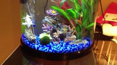 Awesome Fist Tank Decor Design ~ http://www.lookmyhomes.com/fish-tank-decor-ideas/