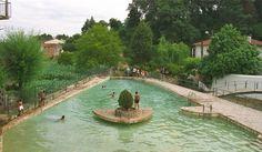 #Piscina de água #natural em Ançã - #Cantanhede