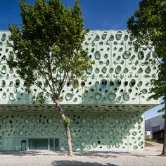 IBS - Institute of Science and Innovation for Bio-Sustainability / Cláudio Vilarinho - Architecture Lab Green Facade, Paint Color Palettes, Paint Colors, Building Exterior, Facade Design, Facade Architecture, Urban Planning, Cladding, Solar Panels
