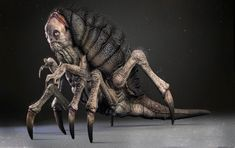 Desert Louse: lord I feel like this would totally work as a daemon of people who were killed by vermin infestations
