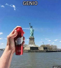 Genio.. Funny Instagram Pictures, Very Funny Pictures, Funny Photos, Funny Images, Funny Chat, Wtf Funny, Stupid Funny, Funny Video Memes, Funny Relatable Memes