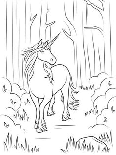 Forest Unicorn Coloring Page From Category Select 20946 Printable Crafts Of Cartoons