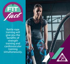 Trifocus Fitness Academy is SA's leader in fitness and sports education, offering the most extensive array of fitness qualifications at the most competitive prices. Benefits Of Strength Training, Fitness Courses, Rope Training, Cardiovascular Training, Battle Ropes, Knowledge Is Power, Train Hard, Muscles, Pride