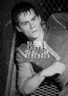 Thomas ~ The Maze Runner Film Books, Book Tv, Book Series, Book Nerd, Maze Runner The Scorch, Maze Runner Movie, Maze Runner Trilogy, Maze Runner Series, James Dashner