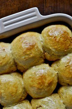 sweet potato and honey dinner rolls