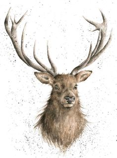 Fantastic stag picture..... At 90cm x 90cm this bad boy would make a REAL statement to your room.  Another classic from Wrendale designs Wrendale stag.