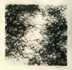 Monotype: Light through the branches.