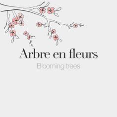 Arbre en fleurs (masculine word) | Blooming tree | /aʁbʁ ɑ flœʁ/  Drawing: @beaubonjoli. by frenchwords