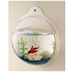 Wall mounted fish bowl. How awesome would this be in my cubical? But fish in small spaces make me sad for some weird reason...