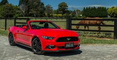 The 2016 Ford Mustang marks the return of the modern muscle car to Australia. Available in a fastback or convertible with two engine choices, here we take a look at the EcoBoost convertible option. Ford Mustang 2016, Ford Mustang Ecoboost, Mustang Cars, 2016 Cars, Ford Mustang Convertible, Dream Cars, Vehicles, Mustangs, Becca