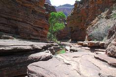 The Patio - Deer Creek Narrows, Grand Canyon