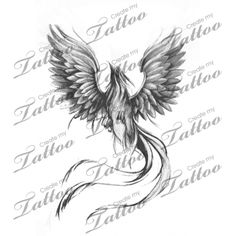 Marketplace Tattoo Black&grey; Phoenix #19796 | CreateMyTattoo.com