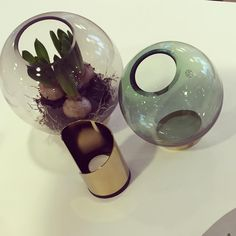 Globe - fineste vasene!  #aytm #aytmdesign #northernlighting #nordiskrom  Photo: nordiskrom