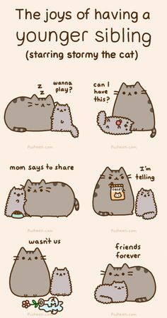 e621 :3 ambiguous_gender angry animated cat cub cute dialog eating edit english_text feline feral food fur grey_fur happy mammal plain_background pusheen pusheen_corp sibling simple_background sleeping text whiskers young