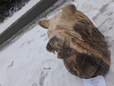 Chainsaw carving, bear, wood sculptures