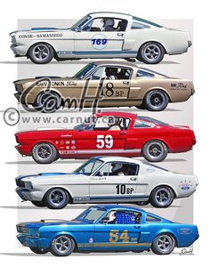 Ford Mustang 1965, Mustang Cobra, Mustang Boss, Mustang Fastback, Ford Gt, Street Racing Cars, Sports Car Racing, Auto Racing, Steeve Mcqueen