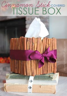 Cinnamon stick tissue box: less than $10 to make!