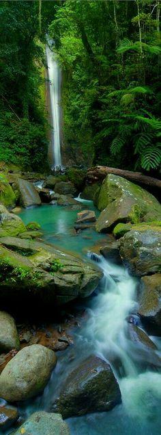 Casseroro falls , Negros Oriental Philippines
