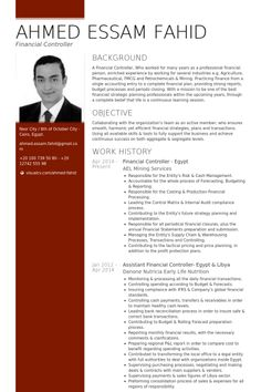 financial controller - egypt Resume Example