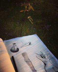 Daisy Lawn Artwork