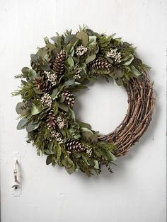 Frosted Forest Preserved Wreath | Gardeners.com