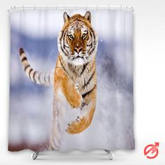 Cheap Tiger in Snow Shower Curtain