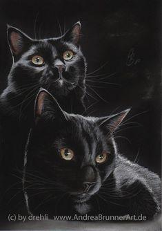 black cat by Drehli on deviantART - Pastel