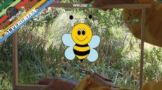 2 of 10 - #Basi di #apicoltura con #Fernando - La #dimora delle api - Come è fatta un #arnia #weusetv