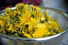 """""""Dandelion Wine""""  Ingredients        8 cups whole dandelion blossoms, stems removed      16 cups water      Juice of 1 orange      Juice of 1 lemon      Peel of 1 large orange coarsely chopped      Peel of 1 lemon coarsely chopped      2 ¼ teaspoons brewer's yeast      ¼ cup warm water      6 cups sugar      8 whole cloves      1 inch piece of fresh ginger, peeled and diced"""