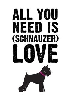 All you need is schnauzer love    5x7 art print by letterhappy, $8.00